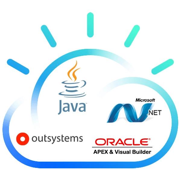 inSystems development platforms