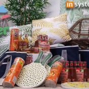 inSystems summer surprise