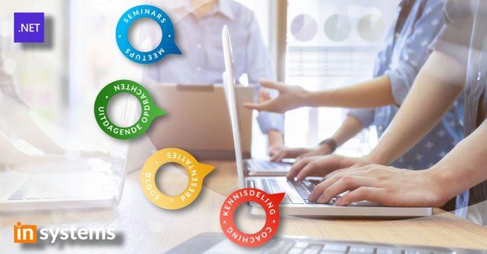 Uitdagingen .NET Lead bij inSystems