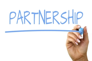 inSystems Partnerships